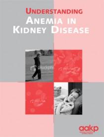 anemia-broch_e922b859d3a1dad4c4626782c5c1d3a8